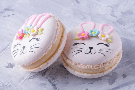 Macarons cu decor IEPURAȘ 3