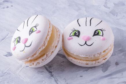 Macarons cu decor IEPURAȘ 4