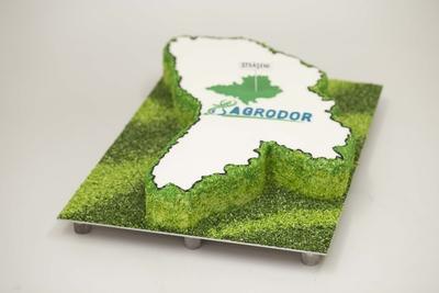 Tort corporativ Agrodor